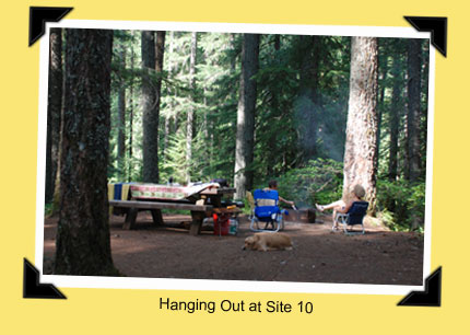 Ollallie Campground, site 10