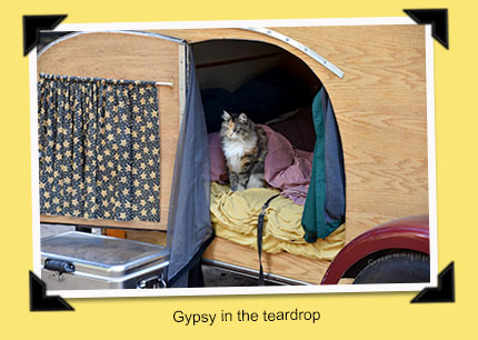gypsy in the teardrop