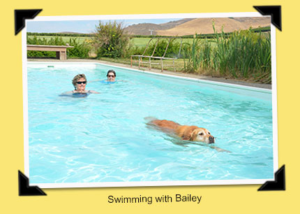 swimming with Bailey